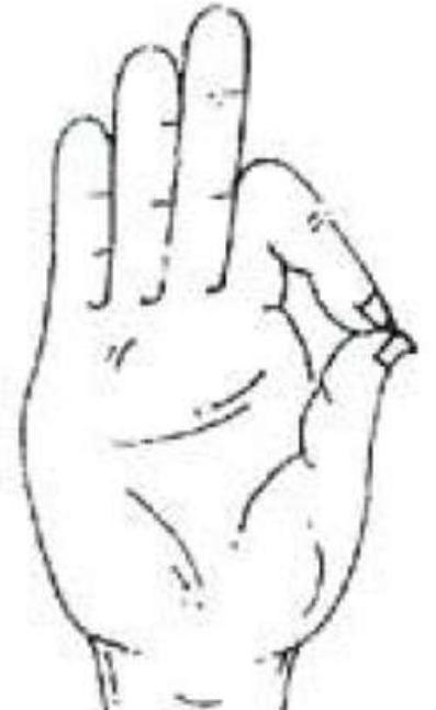 Image result for हाथ की पांचों अंगुलियाँ एक विशेष तत्व