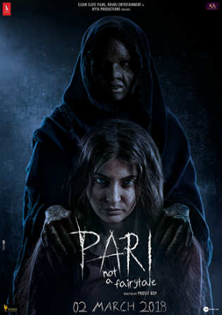 Pari 2018 Pre DVDRip 350MB Full Hindi Movie Download 480p