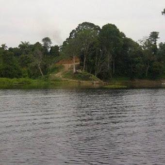 Wisata Alam Datuk Pantai Mangrove Di Batubara Yang Hits