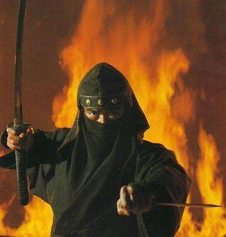 Bayangan Hitam Bernama Ninja dalam Sejarah
