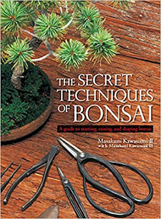 The Secret Techiniques of Bonsai - Easy to understand book on Bonsai from The Little Bonsai Blog