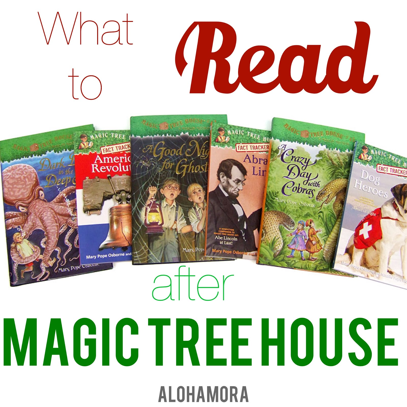 Alohamora Open A Book What To Read After Magic Tree House