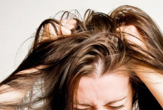 Cara Menghilangkan Kutu Rambut Secara Alami Dan Permanen