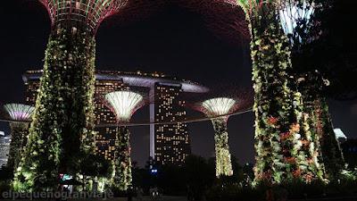 Precio, tarifa,garden by the bay, costos, singapur, promedio diario
