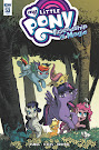 My Little Pony Friendship is Magic #53 Comic Cover Retailer Incentive Variant