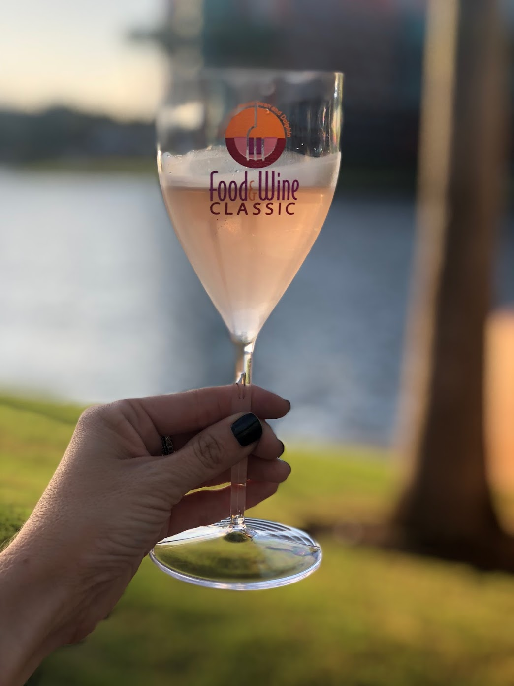 2018 Swan and Dolphin Food and Wine Classic