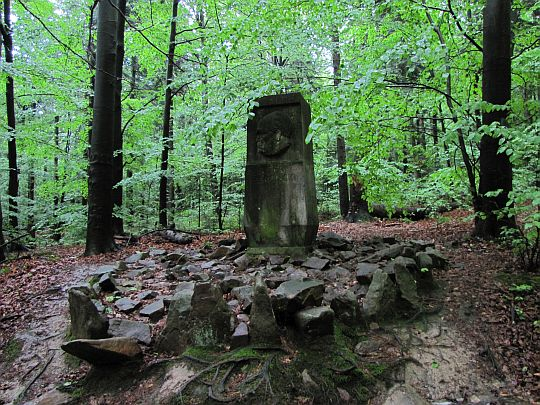 Pomnik Stefana Żeromskiego.