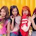 BLACKPINK torna-se o grupo de K-pop mais rápido em alcançar 10 milhões de visualizações no Youtube