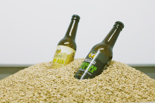 visitas turísticas Málaga, excursiones en Málaga, cerveza artesanal el Malaga
