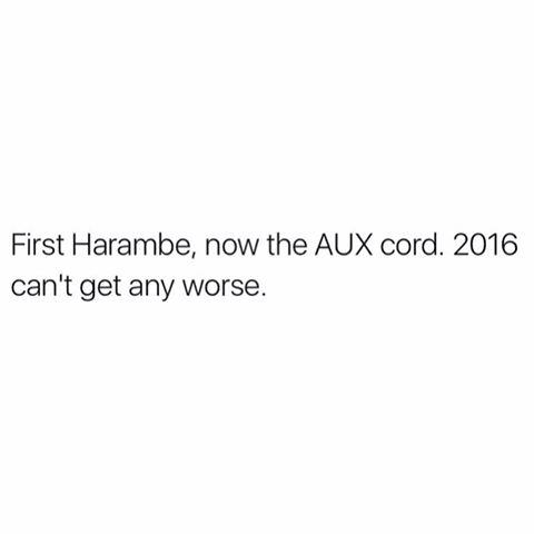 First Harambe, now the AUX cord.