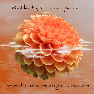 A dahlia reflects peacefully on massage therapy in Haleiwa, Hawaii