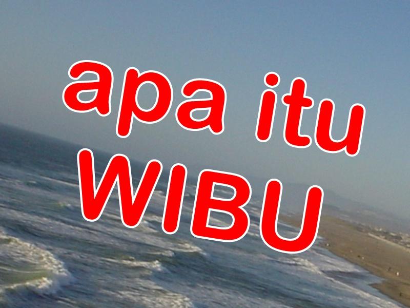 Apa Itu Wibu