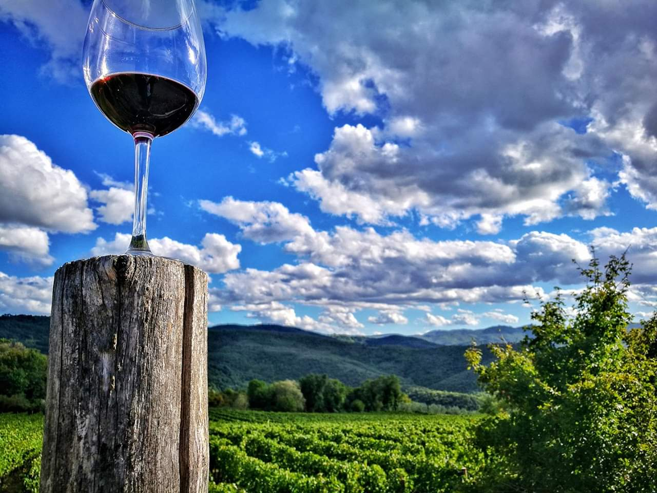 best wine regions in the world