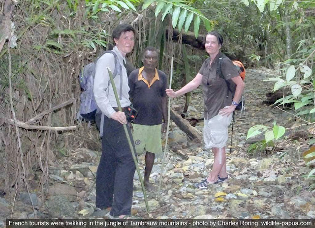 Two French tourists were hiking with local villager in Tambrauw mountains
