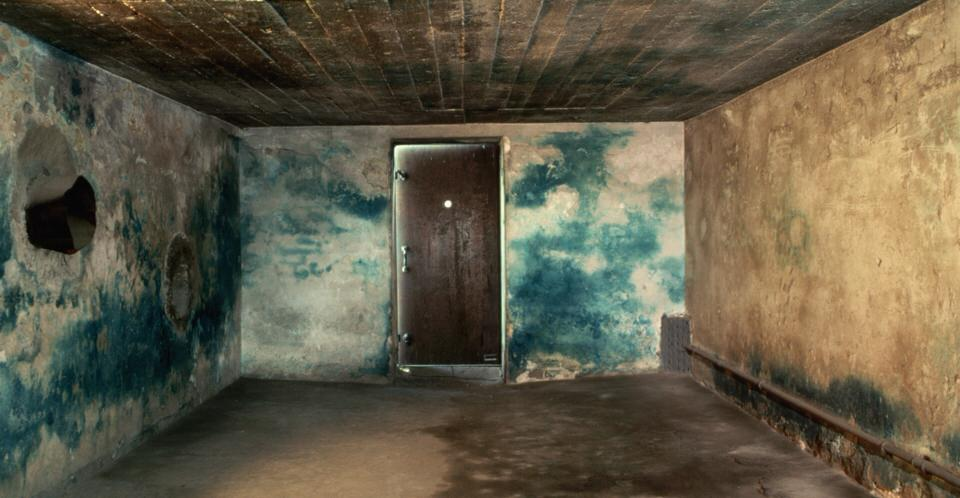 Ο θάλαμος αερίων στο Majdanek, ένα ναζιστικό στρατόπεδο συγκέντρωσης στην Πολωνία, οι τοίχοι βάφτηκαν μπλε από το Zyklon B που τους σκότωνε (οι αρνητές του ολοκαυτώματος ως γνήσιοι ανόητοι αρνούνται την χρησιμοποίηση του Zyklon B).
