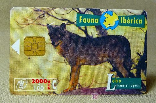 Tarjeta telefónica Lobo (Canis lupus)