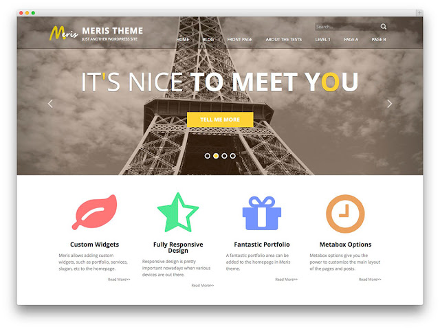 Meris wordpress theme
