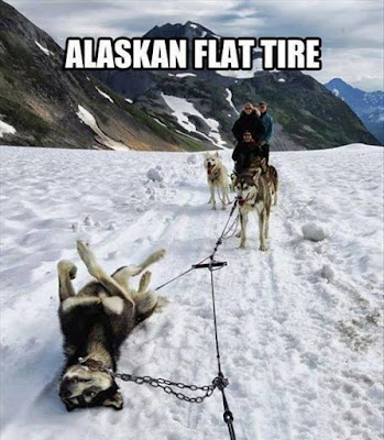 Alternative of tire in alaska