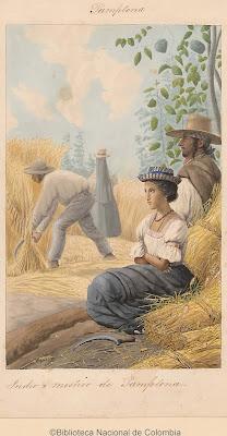 acuarela personas segando trigo ramas chirimoya con frutos