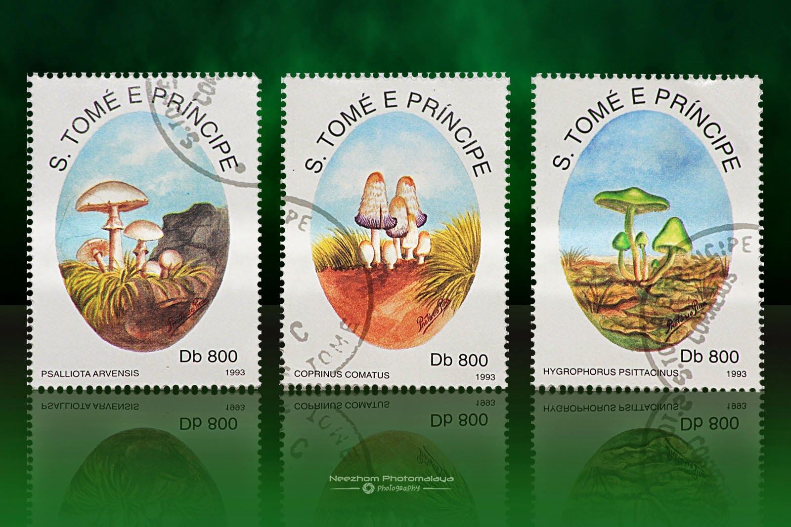 S. Tome E Principe mushrooms stamps 1993