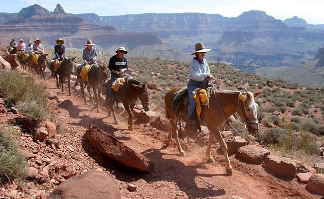 Xvlor Grand Canyon National Park