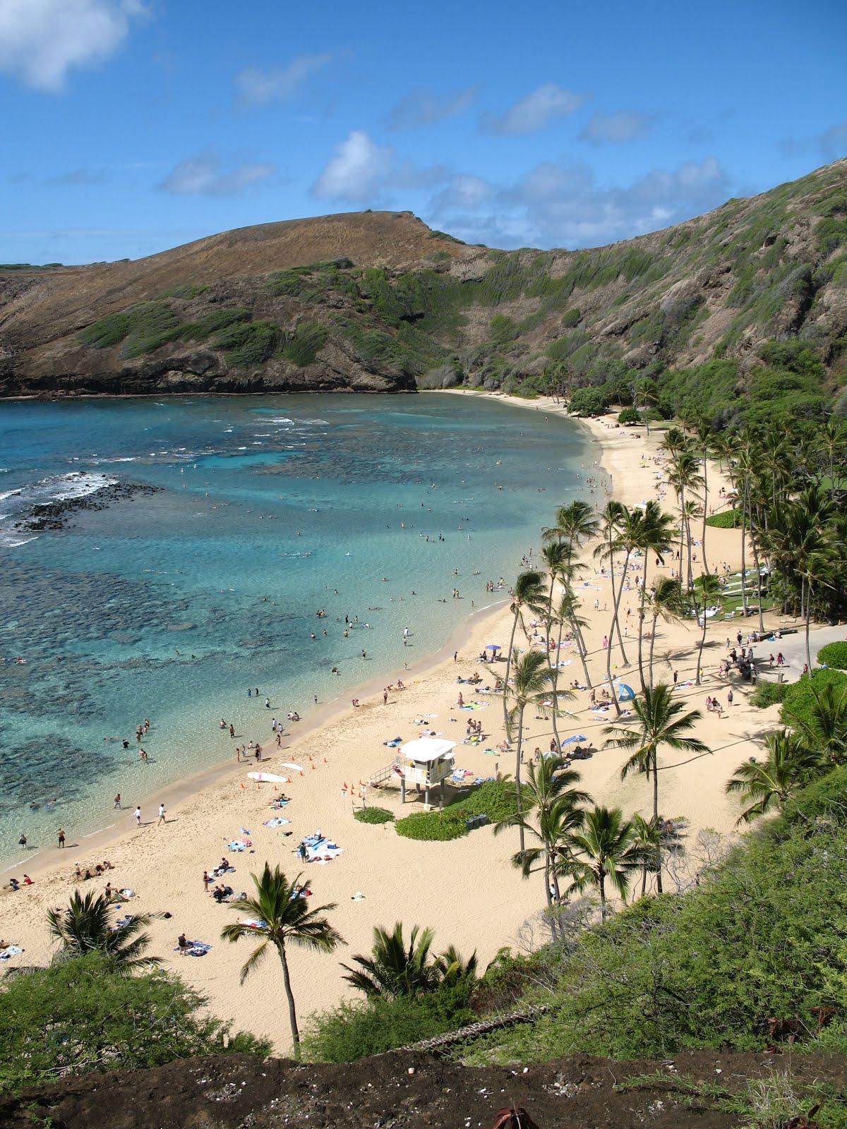 descriptive essay about the ocean writing descriptive essay about the beach
