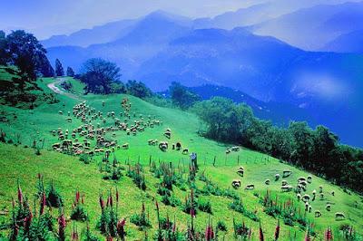 taiwan-promotes-tourism-targeting-indians