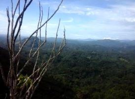 Bukit Ambulung, Gunung AMbulung, Puncak GUnung Ambulung
