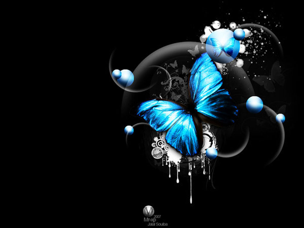 3D Image And Piture: 3d Butterfly Image