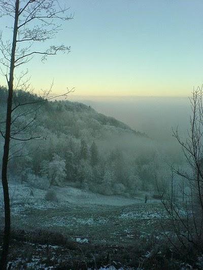 emisi hutan, pembentukan awan