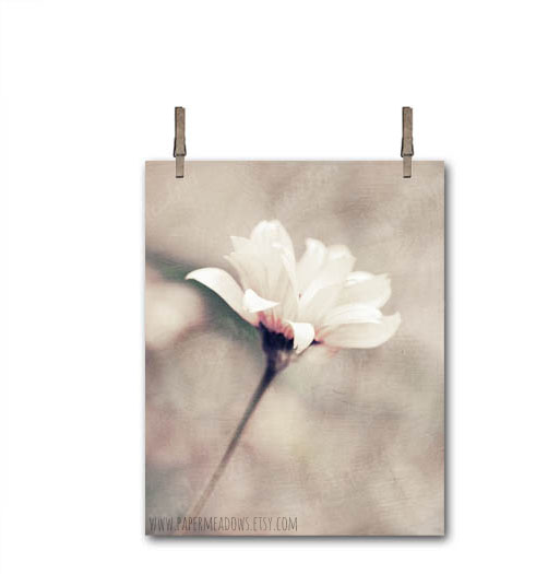 Floral Wall Decor. White Flower Photography. You can purchase and download our photography creations and instantly print at home from our Paper Meadows Photography Shop on ETSY. To Visit our shop now click here.