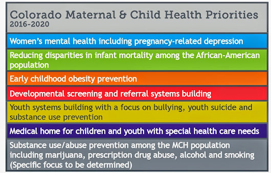 Results from the Colorado Maternal and Child Health Needs Assessment