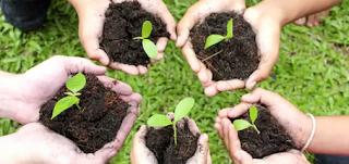 Contoh Paragraf Persuasif Bertema Kesehatan Lingkungan