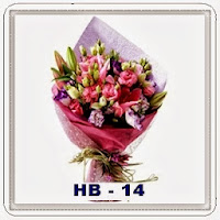 HB 14