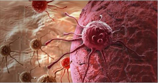 El mundo entero celebra esta noticia: Univ de Manchester descubre la cura de cáncer de mama