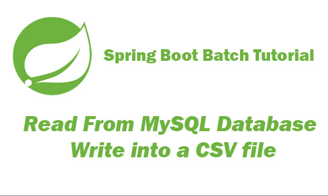 Spring Batch Boot Read From MySQL Database and Write into a CSV file