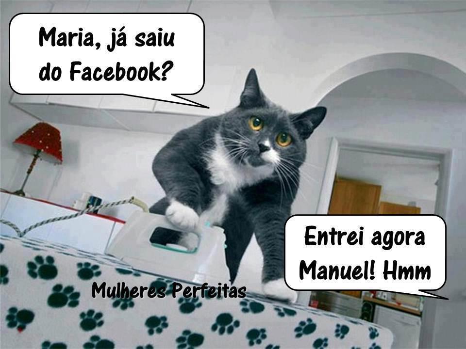 Imagens Engraçadas Para Compartilhar No Facebooktwitter E Orkut
