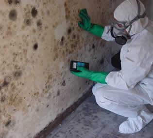 Mi link blog elimina la humedad de tus paredes con este - Como quitar el moho de los azulejos ...