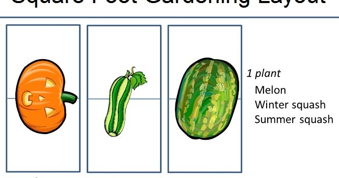 Gardening square foot gardening layout my favorite things for Four foot garden blueprint