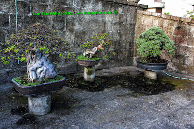 , Garden, Baluarte de San Diego, Intramuros, Manila, Philippines
