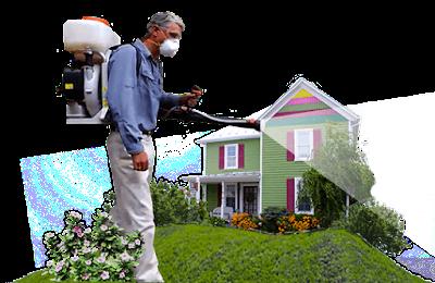شركة مكافحة حشرات بالدمام وافضل ابادة للبق والنمل الابيض