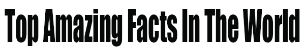 Top Amazing Facts in the World
