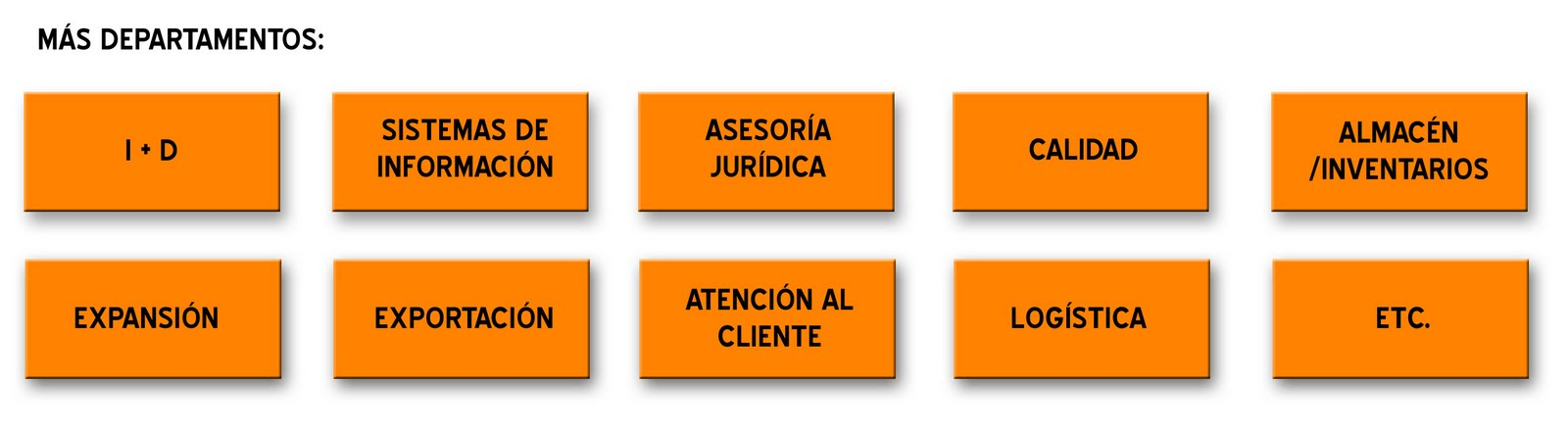 Organización Las Funciones De Cada Departamento En La