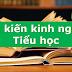 SÁNG KIẾN KINH NGHIỆM CHUYÊN MÔN - QUẢN LÍ CẤP TIỂU HỌC