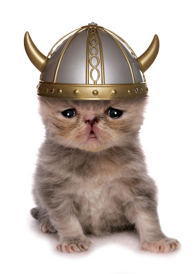 kitten wearing a toy viking helmet