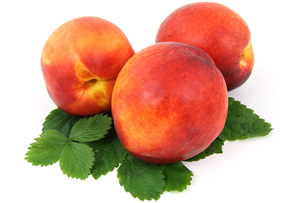 6 Dangers of Stone Fruits for Dogs