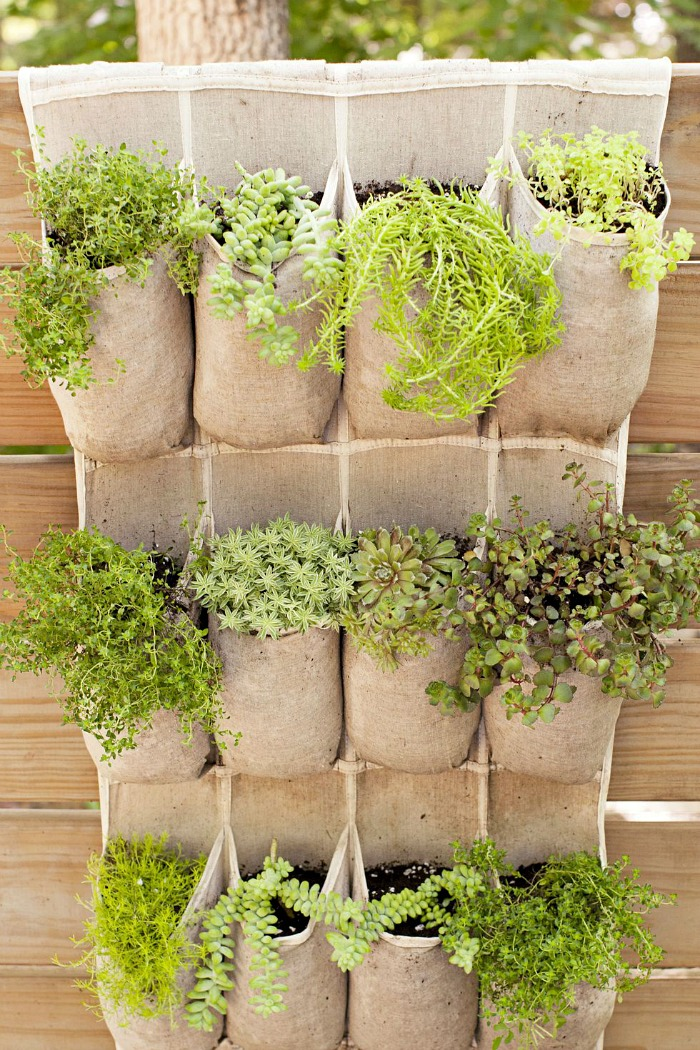 Shoe organizer vertical planter