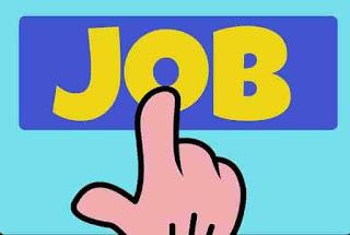 rajasthan govt jobs