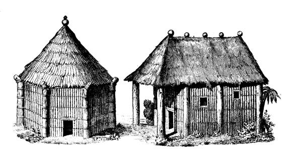 tainos and kalinagoes The arawak/taino indians of the island of hispaniola (haiti) on december 6th, 1492 christopher columbus landed at mole st nicholas in haiti's north.