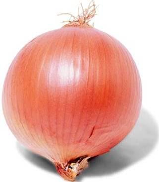 Foto de una linda cebolla entera